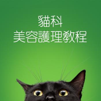 貓科美容護理證書課程
